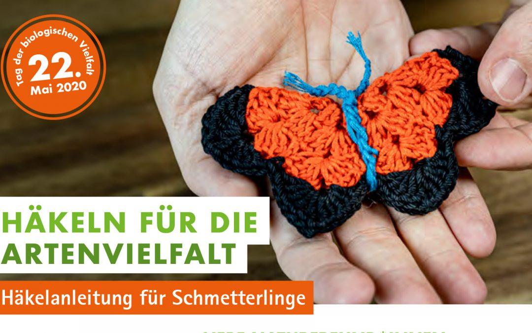 200408_Titel_Schmetterling_2020_01-1