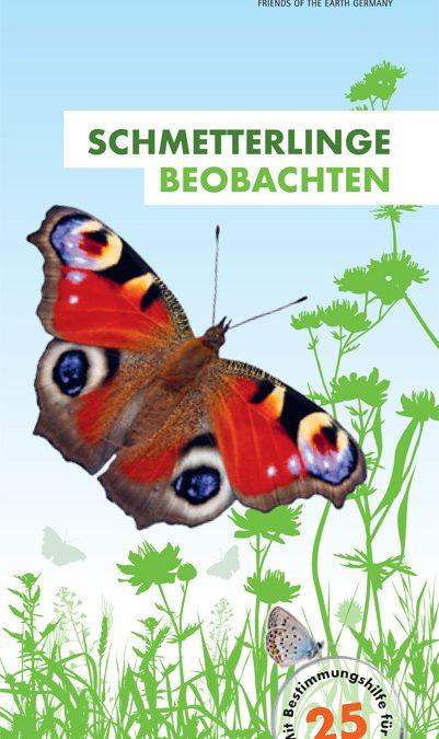 Schmetterlinge beobachten – mit Bestimmungshilfe für 25 Falter